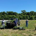 Farm-to-Food Pantry