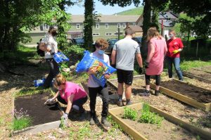 Family of Ellenville Garden Planting w/ Arc of Ulster County